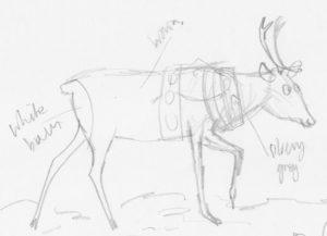 Scamp Reindeer